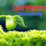 HD Images Nature Good Morning Pics