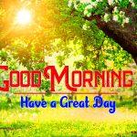 Happy Good Morning Free Pics