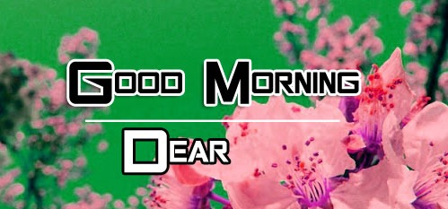 Happy Good Morning Images pics hd