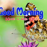 Happy Good Morning Pics Hd