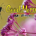 Happy Good Morning Pics Pictures