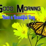 Happy Good Morning Pictures Wallpaper