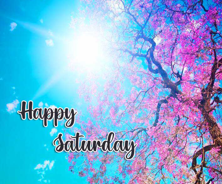 Happy Saturday Good Morning Images Pictures Free new