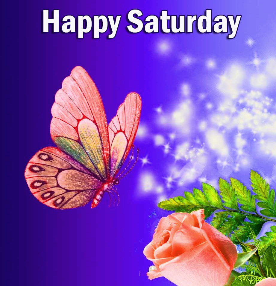 Happy Saturday Good Morning Images pics With Butterfly