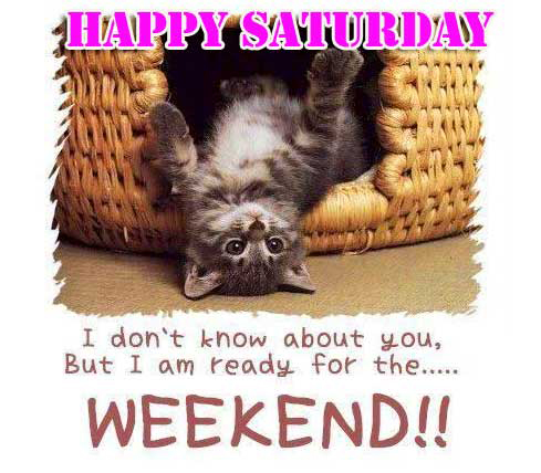 Happy Saturday Good Morning Images Photo pics Download