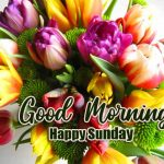 145+ Happy Sunday Good Morning Wallpaper Download