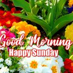 Happy Sunday Good Morning Wallpaper
