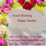 happy sunday good morning images photo pictures free hd
