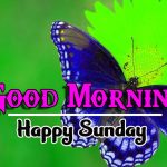 Happy Sunday good Morning Images pictures hd