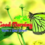 Happy Sunday good Morning Images pictures download