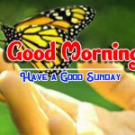 Happy Sunday good Morning Images pics free hd