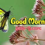 Happy Sunday good Morning Images photo hd