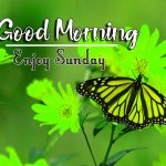 Happy Sunday good Morning Images photo free hd