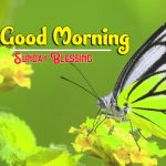 Happy Sunday good Morning Images pictures photo hd