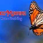 Hd Free Happy Good Morning Images
