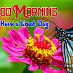 Hd Free Happy Good Morning Photo Pics