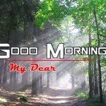 Hd Free Nature Good Morning Images Pics
