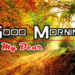 Hd Free Wallpaper Happy Good Morning Pics