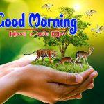 Hd Wallpaper Nature Good Morning Images