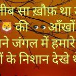 Hindi Shayari Whatsapp DP Images pictures free hd
