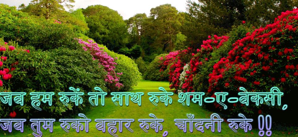 Hindi Whatsapp Status Images Pics Download Free