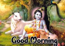 Jai Shri Krishna Good Morning Wallpaper