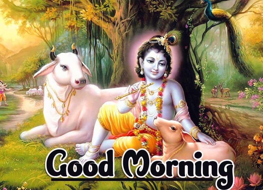 Jai Shri Krishna Good Morning Images pictures free download