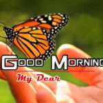 Latest Happy Good Morning Photo Pics