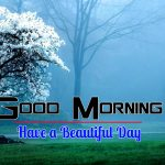 Latest Nature Good Morning Images Pics