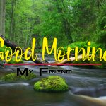 Nature Good Morning Free Download