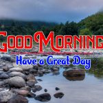 Nature Good Morning Free Wallpaper