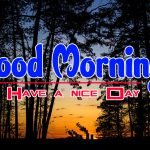 Nature Good Morning Images Pics Free