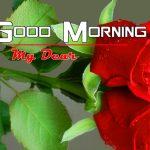 Nature Good Morning Photo Free Hd Download