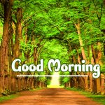 Nature Good Morning Images pics hd