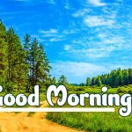 Nature Good Morning Images pics free hd