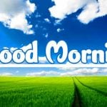 1892+ Good Morning Have a Beautiful Day Images HD