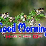 New HD Pics Happy Good Morning