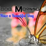 New Happy Good Morning Hd Photo