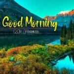 New Nature Good Morning Photo Free