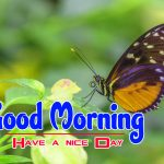 New hd Happy Good Morning Images Free