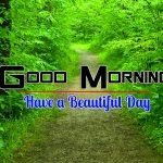 Nice Nature Good Morning Pics