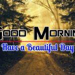 Nice Nature Good Morning Pics Photo