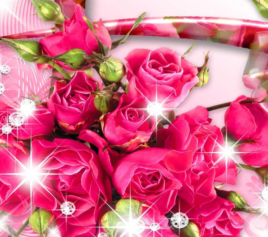 Nice Whatsapp DP Images
