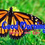 Photo Happy Good Morning