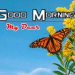 Pics Happy Good Morning Photo Free