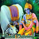Radha Krishna Good Morning Images wallpaper freehd