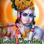 Radha Krishna Good Morning Images photo hd download