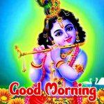 Radha Krishna Good Morning Images pics hd