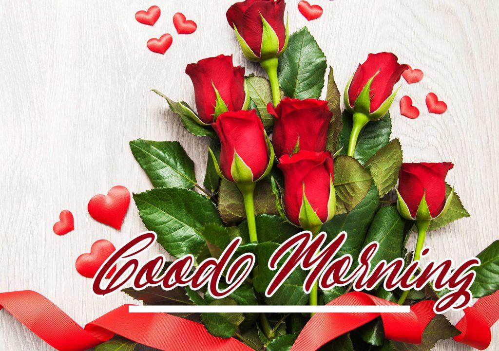 Beautiful Red Rose Good Morning Images Wallpaper Pics DOWNLOAD
