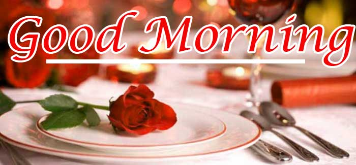 Best Red Rose Good Morning Images Pics Download Free New